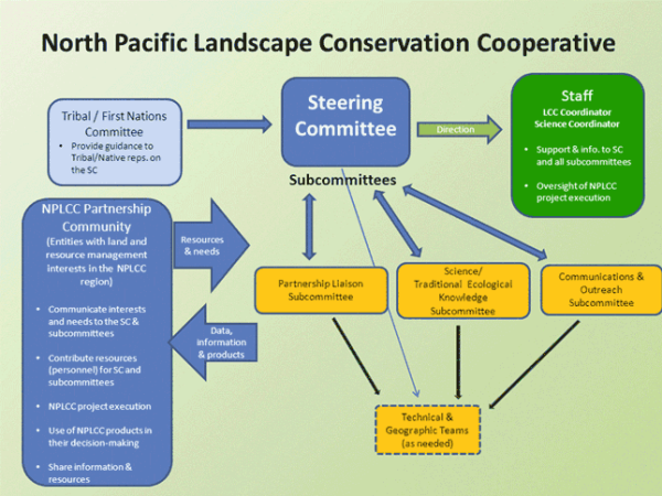 NPLCC Organizational Structure